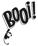 booi_logo