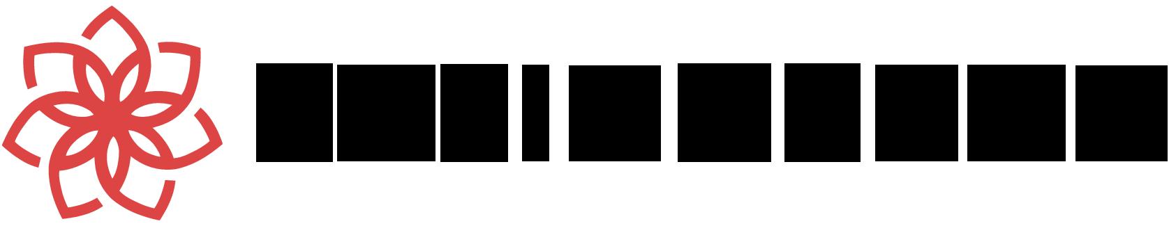 casinochan_logo